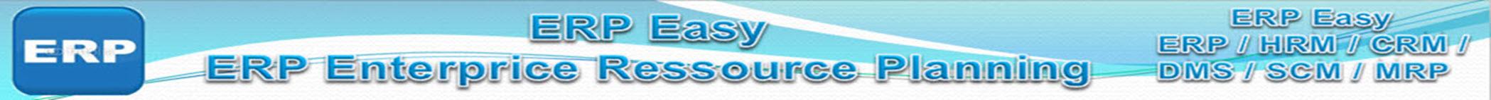 ERP Easy